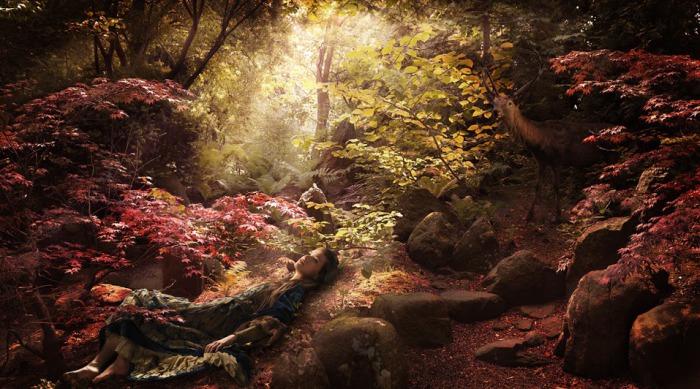 Роскошная осень. Автор фото: Рональд Шметс (Ronald Schmets).